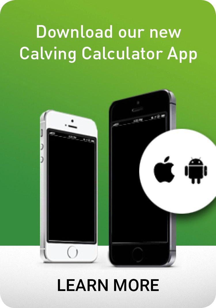 Calving Calculator